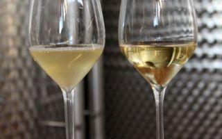 Как осветлить вино из винограда в домашних условиях