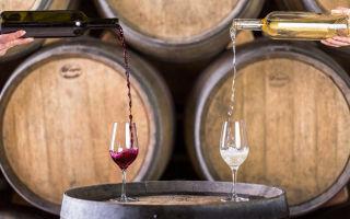 Сухое вино в домашних условиях из винограда