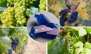 Медный купорос для винограда: описание, применение