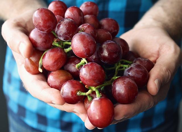 руки виноград