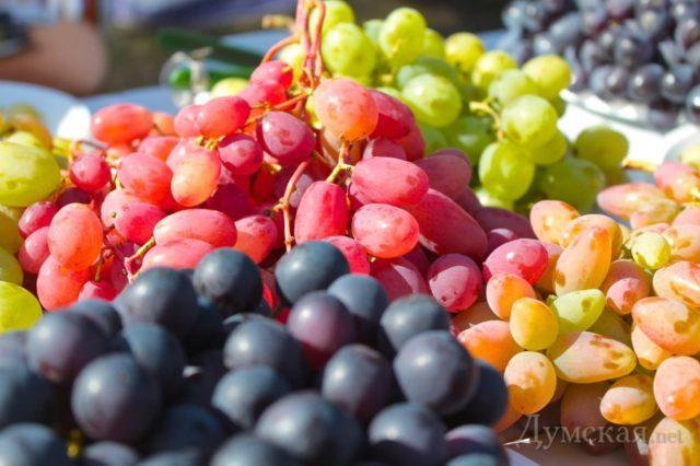 разный виноград