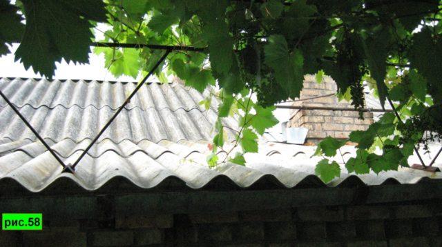 шпалера на крыше
