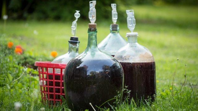 вино в бутылях