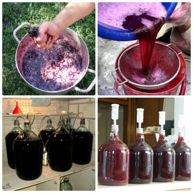 этапы приготовления вина