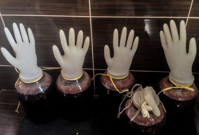 бутыли в перчатках