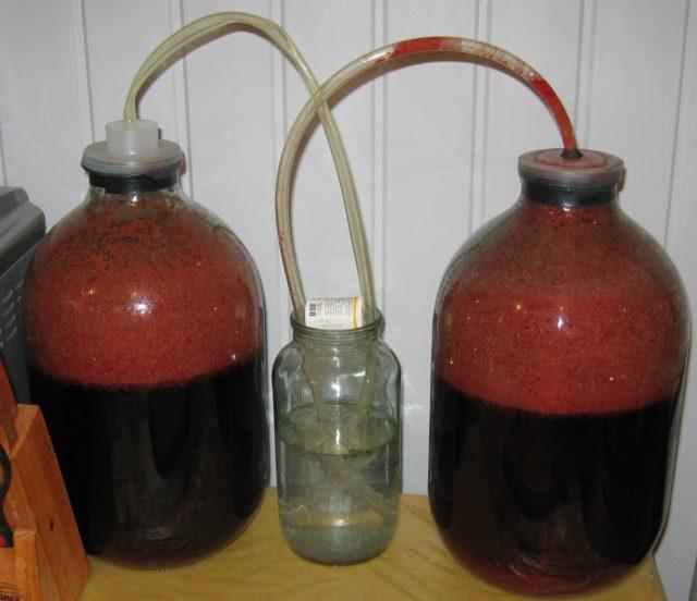 бутыли с вином